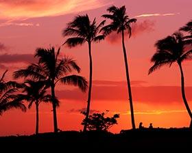 夏威夷旅游攻略图片