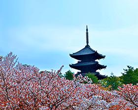 京都旅游攻略图片