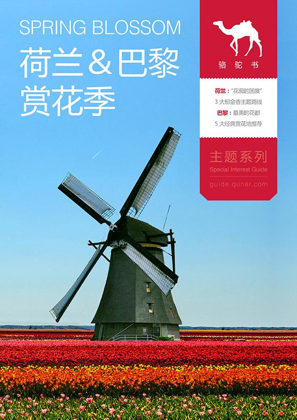 荷兰&巴黎赏花季旅游攻略图片