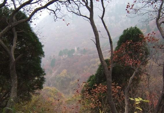 老龙湾旅游攻略_门票_地址_游记点评,潍坊旅游景点