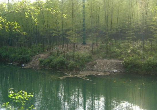 石龙山旅游景点图片