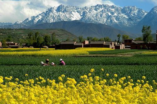 目的地 中国 甘肃 临夏 太子山风景旅游区  临夏景点排名第13