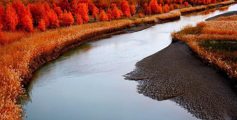 塔里木河与塔克拉玛干旅游景点图片