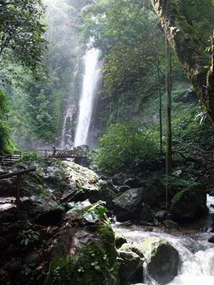 壁纸 风景 旅游 瀑布 山水 桌面 300_400 竖版 竖屏 手机