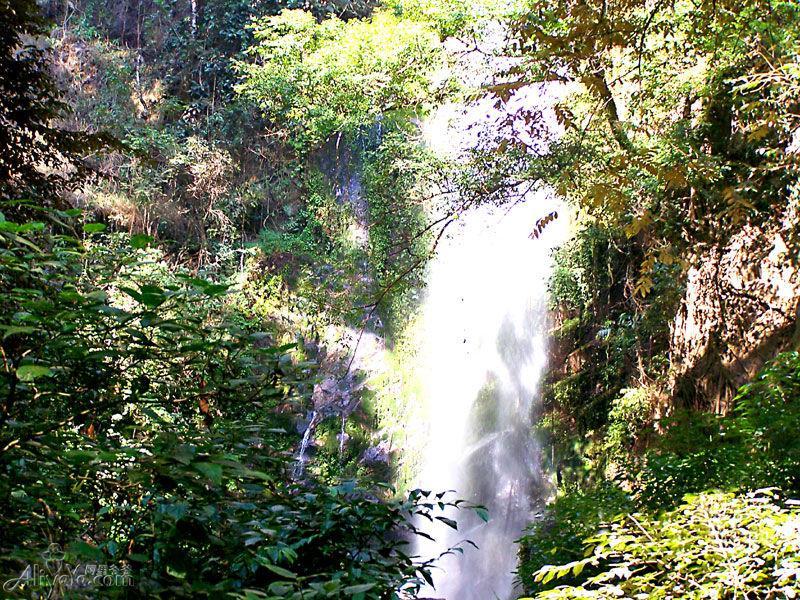 扎朵瀑布位于潞西、陇川、瑞丽三县市交汇的莫里峡谷,藏于山峦叠翠、万木峥嵘、双峰对峙的广弄山和广马山之间的亚热带雨林深处。 清澈的泉水从40米高的悬崖陡壁倾泻而下,似一匹巨幅白绸在空中迎风飞舞,高峰悬崖间雪飞云涌,响声雷鸣,瀑布下又有一条小溪潺潺而过,是整个景区的灵魂,如果能在早晨日出时来到瀑布前观赏,实在是一种享受。